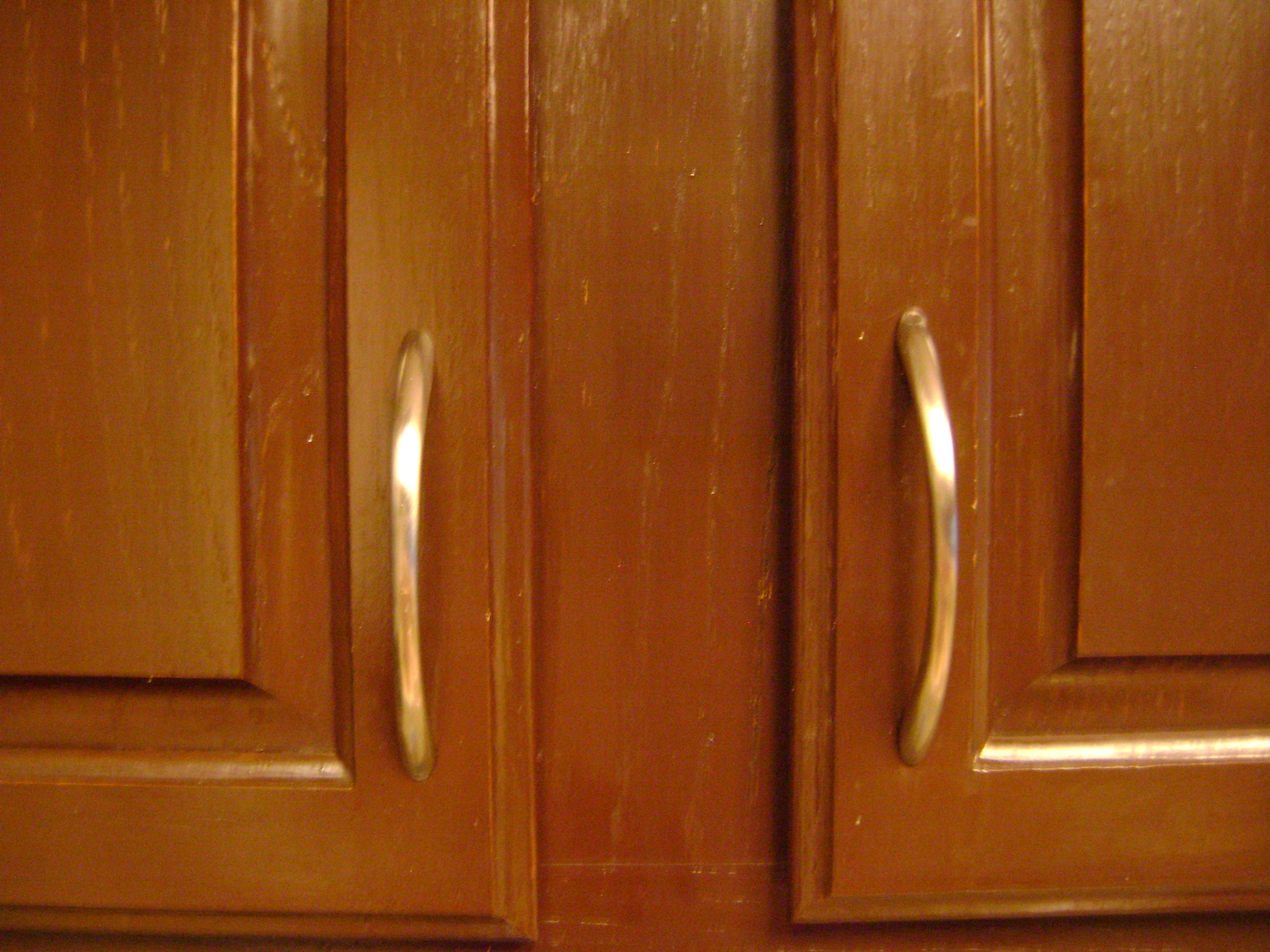 Kitchen Cabinet With Rectangle Hinge Doors