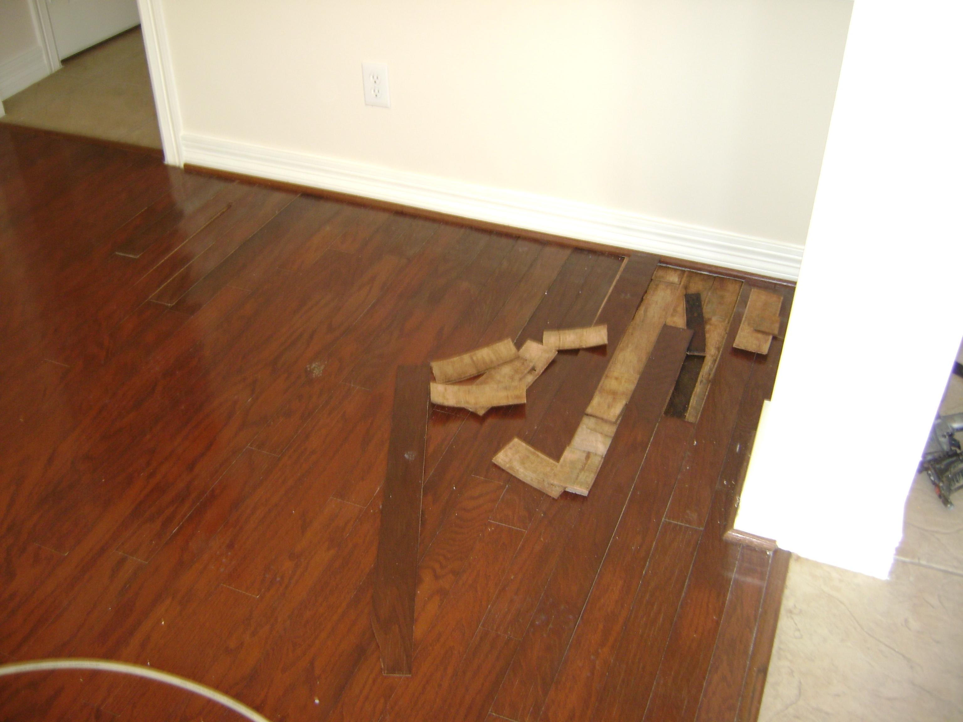 Home Remodel Flooring
